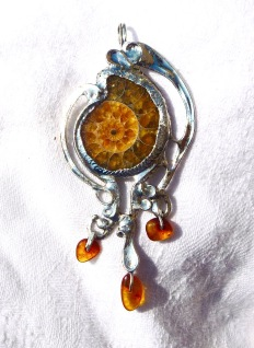 ammonite et ambre